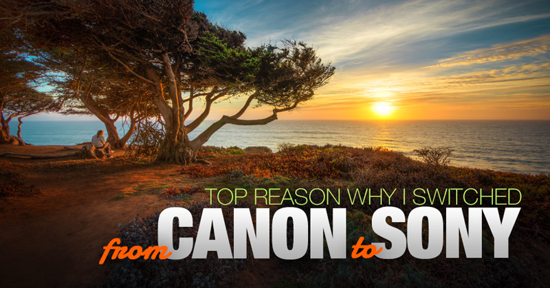 Top Reason Why I Switched from Canon to Sony 1