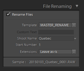 Lightroom Organization - rename template