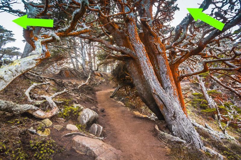 Case Study: How to Revive Overcast Landscape Photographs 5